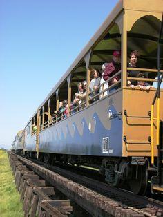 Sacramento River Train - Woodland, CA - Kid friendly activity reviews - Trekaroo