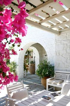 Large terra cotta pots with green foliage & bright pink bouganvilla against white stucco walls