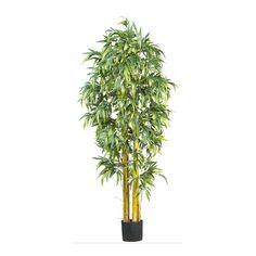 Biggy Style Bamboo Silk Tree - 6 Feet Tall ** Click image to review more details.