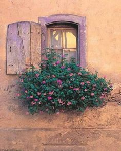 Love this lavander window