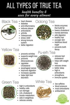 Which Types of Tea Are Good for You? - The Little Health Company #health #natural #remedies