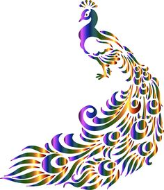 free peacock clipart 1 peacock costume pinterest peacocks rh pinterest com free printable peacock clipart free peacock image clipart