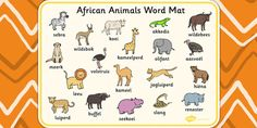 Animals | Afrikaans Languages Of South Africa, Afrikaans Language, South Afrika, Out Of Africa, African Animals, Preschool Activities, Vocabulary, Learning, Words