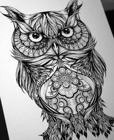 Owl Drawing Design Art