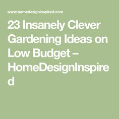 23 Insanely Clever Gardening Ideas on Low Budget – HomeDesignInspired