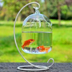Mount Bubble Aquarium Fish Tank Hanging Glass Plant Vase Home Decoration Glass Aquarium, Aquarium Fish Tank, Wall Aquarium, Hanging Vases, Hanging Plants, Vase Fish Tank, Unique Fish Tanks, Glass Fish Bowl, Plant Breeding