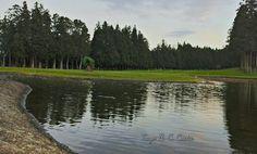 @Terceira island golf course