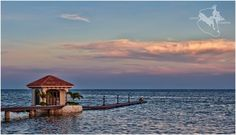 Our friends at Conch Creative took this glorious picture  at a resort in Belize ♥