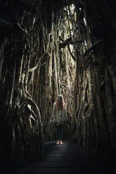 Ibai Acevedo | Surrealista