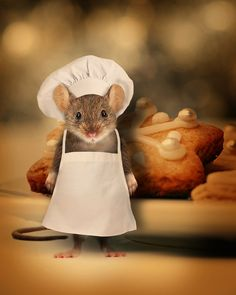 The chef.