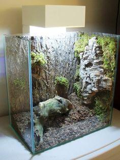 fluval aquariums - Google Search