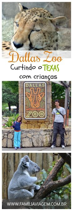 Dallas Zoo, curtindo