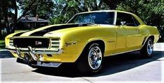 Ford Mustang Car, Ford Mustangs, Chevy Muscle Cars, Us Cars, Thats The Way, American Muscle Cars, Car Wheels, Chevrolet Camaro, Classic Cars