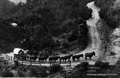 Walhalla, 1900. Victoria Australia Melbourne Australia, Australia Travel, Australia Photos, Melbourne Victoria, Victoria Australia, Vintage Photographs, Vintage Photos, Aboriginal History, Cool Countries