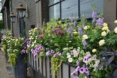 The 2019 Garden Cruise Landscape Elements, Landscape Design, Flower Boxes, Flowers, Flower Containers, Garden Works, Circle Light, Twinkle Lights, Landscape Designs