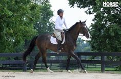 Canter Transition Troubleshooting Five exercises to develop your green horse's balance in the canter.