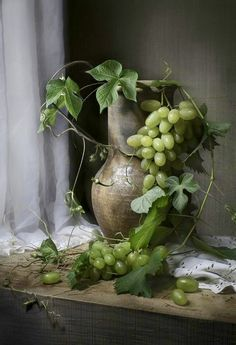 Green Grapes, Vine Leaves & Pewter Still Life . Olive Green Color, Green Colors, Green And Grey, Fruit Photography, Still Life Photography, Painting Still Life, Still Life Art, Fruit Painting, Still Life Photos