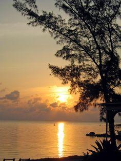 Take me to the Bahamas!