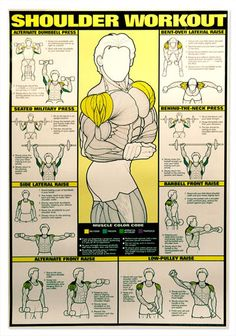 These large exercise charts show