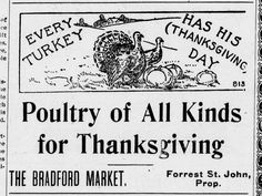 Poultry of All Kinds for Thanksgiving