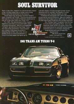 '81 Pontiac TransAm... V8 was the big time for those who wanted to show off.