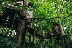 Resultado de imagem para house in the forest