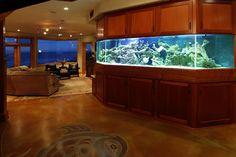 built in saltwater tank