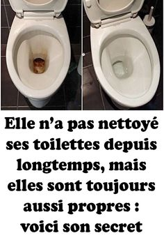 Elle n'a pas nettoyé ses toilettes depuis longtemps, mais elles sont toujours aussi propres : voici son secret Little Boxes, Dog Bowls, Living Room Designs, Household, Sweet Home, Cleaning, Interior, Voici, Tips