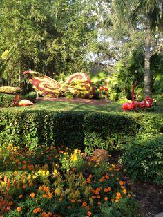 Bush Gardens Florida