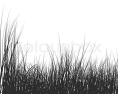 2755521-vector-grass-silhouettes-background-for-design-use.jpg (800×640)
