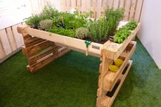 Hochbeet aus Europaletten ✔ Hochbeet selber bauen aus Paletten ✔ Inspiration… Raised beds made of Euro pallets ✔ Raised beds made of pallets ✔ Inspirations ✔ Guides ✔ Tips on construction ✔ DIY ideas ✔ Pallet furniture ✔ Garden ✔ Furniture ✔ Diy Pallet Projects, Pallet Ideas, Garden Projects, Pallet Garden Ideas Diy, Wood Projects, Garden Ideas With Pallets, Outdoor Projects, Raised Garden Beds, Raised Beds