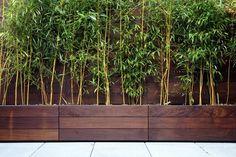 Pflanzgefäße und Sichtschutzzaun aus dunklem Holz