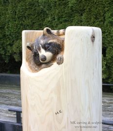 Raccoon woodcarving - front