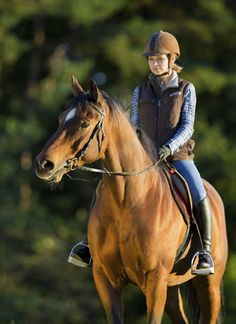 Nervous Horses-I just read through the link quickly and it has some GOOD advice for riders.  All horses spook.