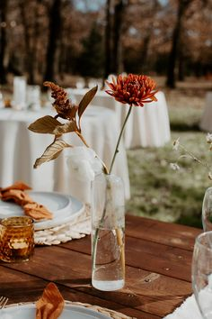 This bohemian outdoor wedding day in Fort Worth, Texas was absolutely STUNNING! Beige Wedding, Orange Wedding, Floral Wedding, Fall Wedding, Diy Wedding, Decor Wedding, Wedding Things, Wedding Dress, Traditional Wedding Decor