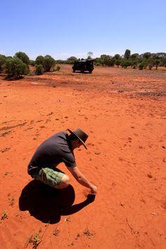 Dry Heartland. Dry scrubland west of Cobar, NSW, #Australia #travelphotography #travel