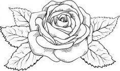 Resultado de imagen para dibujos de flores para colorear