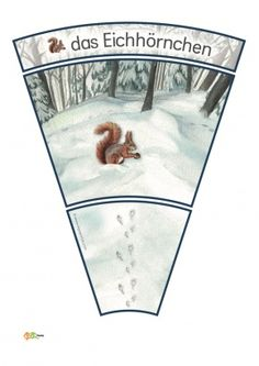 KiGaPortal - for pre-K, kindergarten and elementary school Animals Tattoo, Animal Footprints, Kindergarten, Fox Squirrel, Snow Forest, Woodland Party, Forest Animals, Kids Education, Science