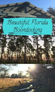 Central Florida Boondocking: Three Lakes Wildlife Management Area// A great spot for hiking, boondocking and adventure! your adventures and let's travel together! Travel Hack, Rv Travel, Florida Travel, Florida Beaches, Florida Vacation, Travel Tips, Everglades Airboat, Three Lakes, Florida Adventures