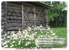 Finnish Words, Wells, House, Cottages, Cabins, Home, Country Homes, Cottage, Homes