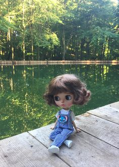 Large Eyes, Blythe Dolls, Fashion Dolls, Color Change, Baby Dolls, Cartoons, Flower Girl Dresses, Look, Nature