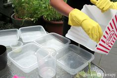Make Your Own Concrete Planters From Recycling!