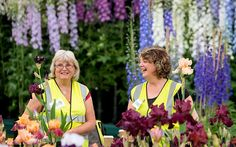 Flower power: two women take a short break from arranging irises in the Grand Pavilion of the Chelsea Flower Show. Picture: REX FEATURES - 2014