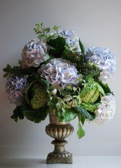 hydrangeas and ornamental cabbage