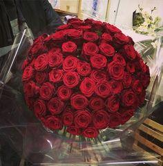 Blue Sky Flowers Red Rose Design