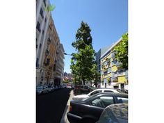 Loja Arrendamento 1500€ em Lisboa, Avenidas Novas, São Sebastião (São…