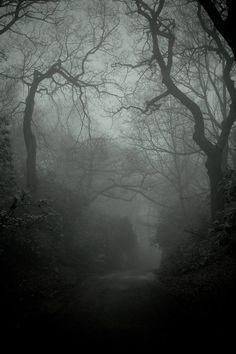 an manchen Tagen ist das Tor zu einer anderen Welt offen. Doch werd ich den Mut haben dorthin zu gehen?