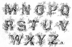 Ames' Guide to Self-Instruction in Practical and Artistic Penmanship Daniel T. Ames, 1884