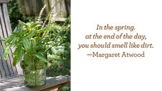 Herb Gardening Tips for Beginners