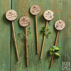 Try These Cute DIY Plant Markers Step up your plant marker game. Try These Cute DIY Plant Markers Step up your plant marker game. Herb Garden Design, Diy Herb Garden, Garden Signs, Herbs Garden, Garden Stakes, Vegetable Garden, Garden Ideas, Garden Plant Markers, Herb Markers